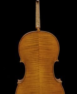 Jan Szlachtowski Workshop Model Cello Back